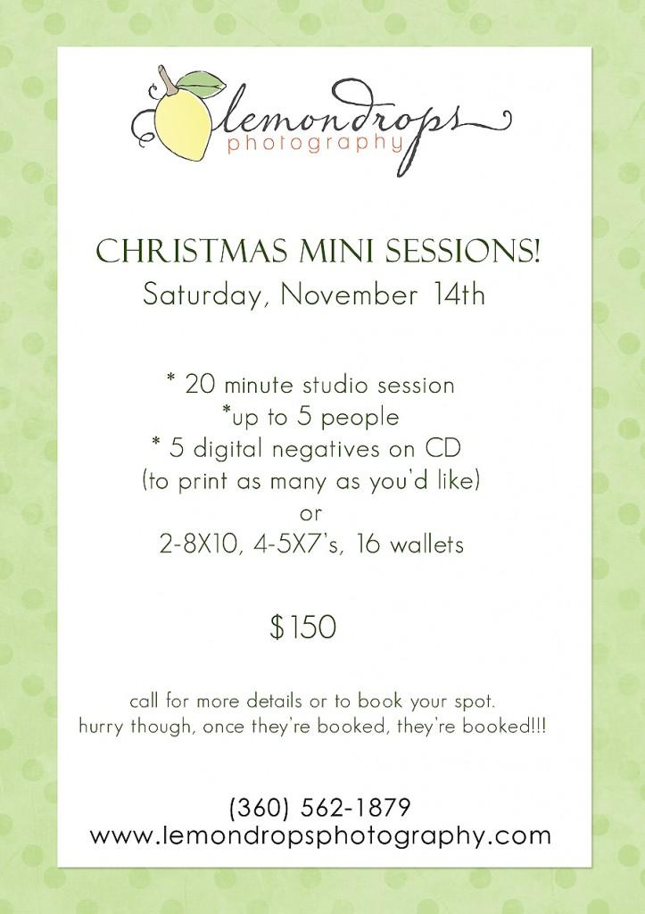 Christmas mini sessionsrs